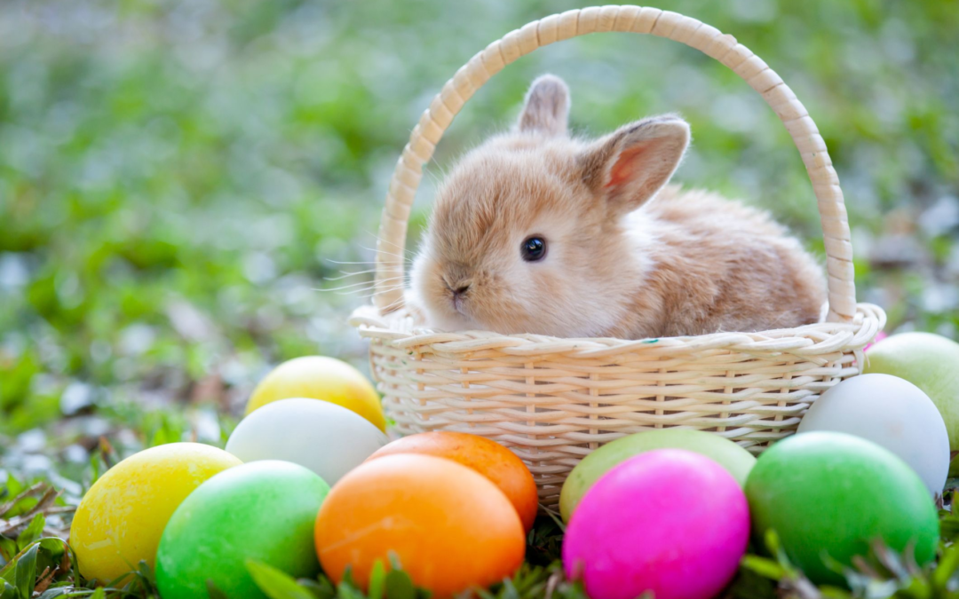 Where Did Easter Come From?